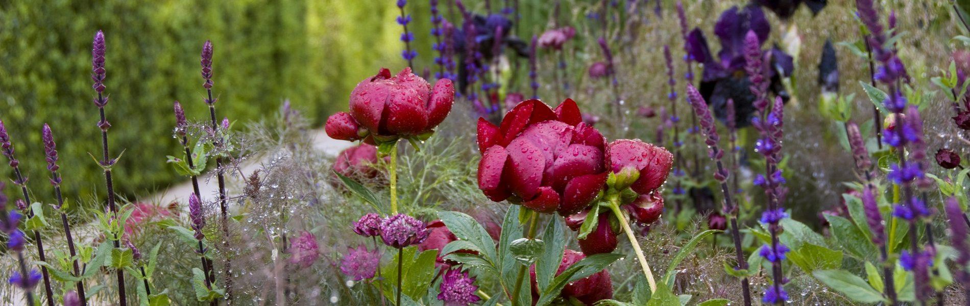Gardens Tours England