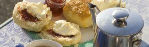 Cornwall Food Tour