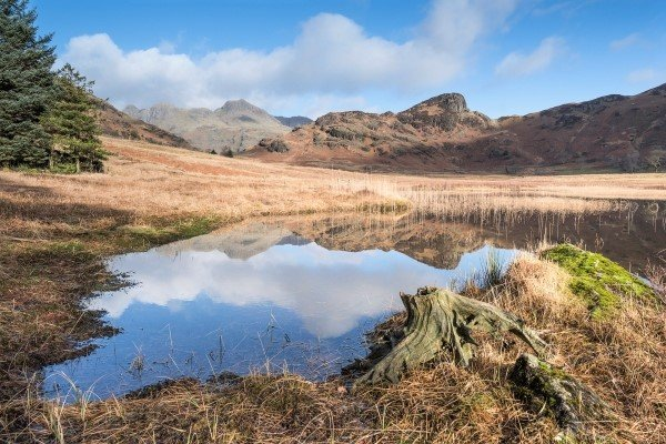 Blea Tarn, Lake District, England